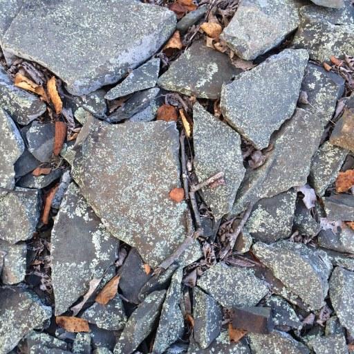 bluestone & lichen