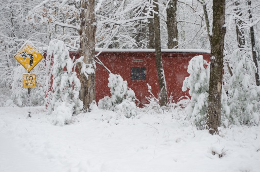 snow & sign & shed