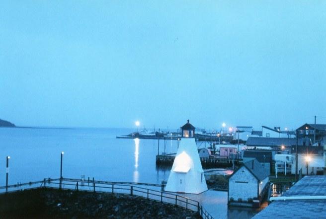 morning bay lights