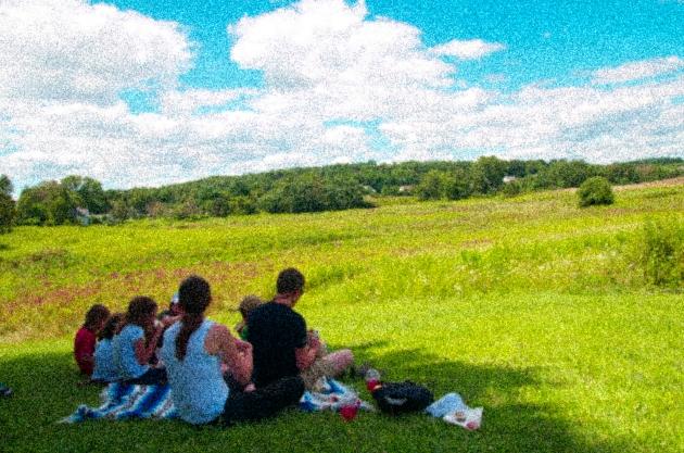 picnic in field grainy