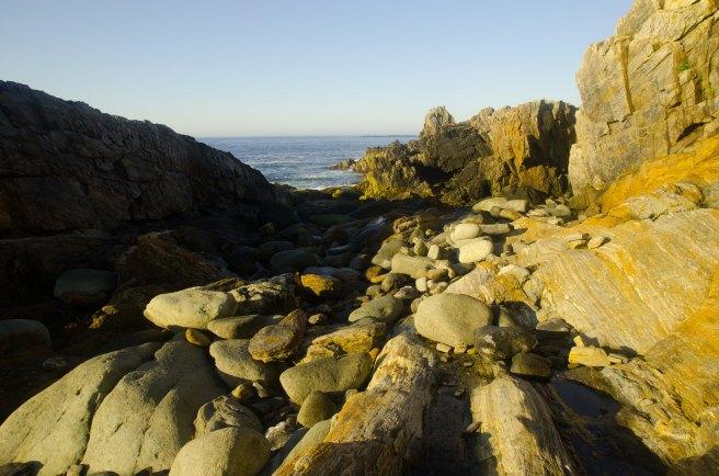 rocks low tide
