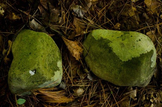 two rocks b